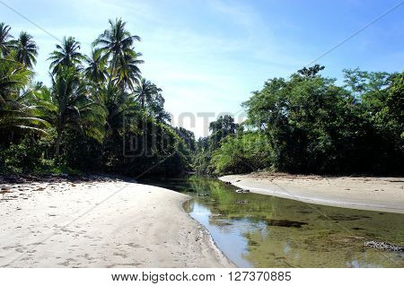 Silent tropical river meets the sea . Philippines. Palawan Island .