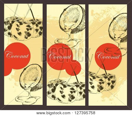 vector coconuts hand drawn sketch banner. vintage style detailed ink and pencil illustrations