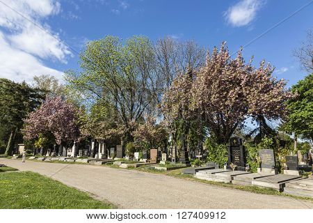 View To  Vienna Central Cemetery