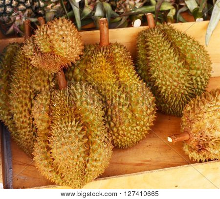 durian - tropical fruit with good taste but bad smell