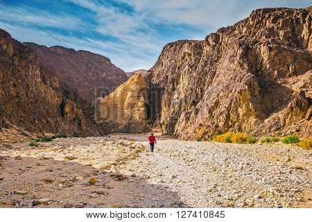 The elderly woman walking along the canyon. Multi-color Black canyon in ancient Eilat mountains.  Israel in January