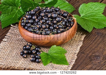 cup of blackcurrant with green leaves on canvas background