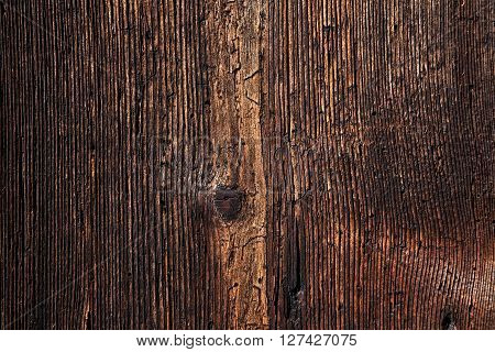 Vintage wooden background.Old wood rotten tree texture.