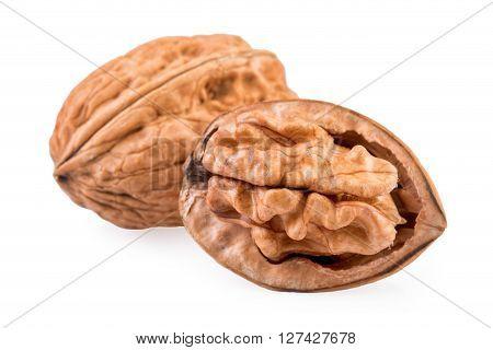 Walnut whole and half of walnut isolaetd on white