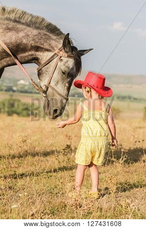 outdoor portrait of young happy girl riding a horse on farm, rural background