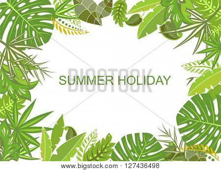 Summer tropical green background
