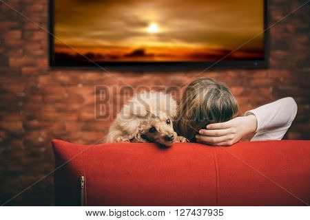 Young woman with dog watching smart TV.