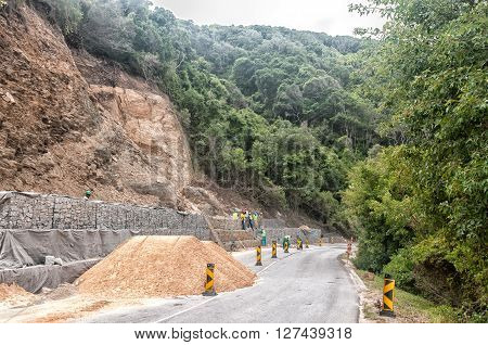 STORMS RIVER MOUTH SOUTH AFRICA - MARCH 1 2016: Rehabilitation along the road from the entrance gate through dense forest to the rest camp at Storms River Mouth