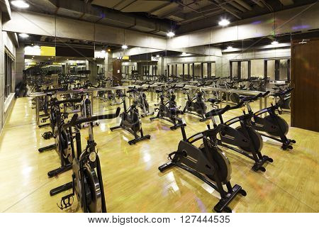 decoration and equipment in modern gym