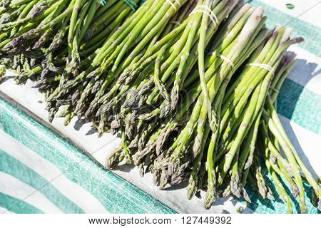 Green bunches of asparagus in a Paris market. Diagonal composition on green striped cloth.