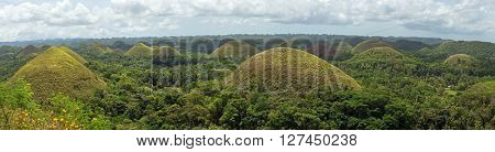 Panorama of famous landmark chocolate hills in Bohol island Philippines