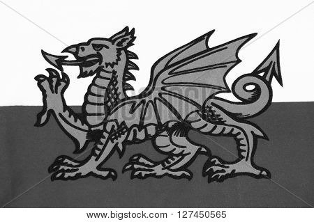 The national flag of Wales known as Y Ddraig Goch (The Red Baron) sadly not included in the Union Jack of the UK. Welsh black and white image