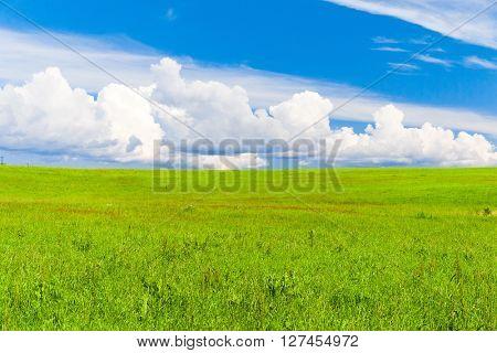 Nobody Outside Green Plain