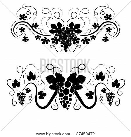 Vector elegant swirls with grapes and leaves