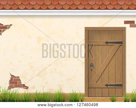 Old weathered wooden door in stucco wall with grass in the foreground. Rural facade view. Vector outdoor background.