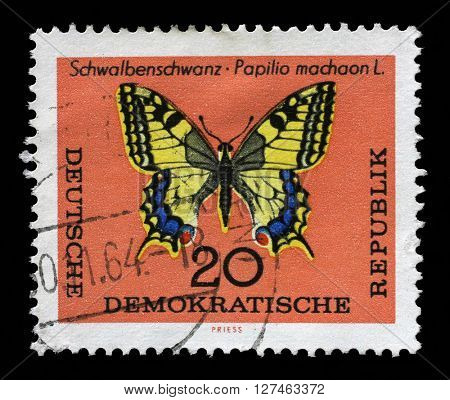 ZAGREB, CROATIA - SEPTEMBER 06: Stamp printed in GDR shows Schwalbenschwanz Papilio machaon L butterfly. The largest butterfly in Germany, on September 06, 2014, Zagreb, Croatia