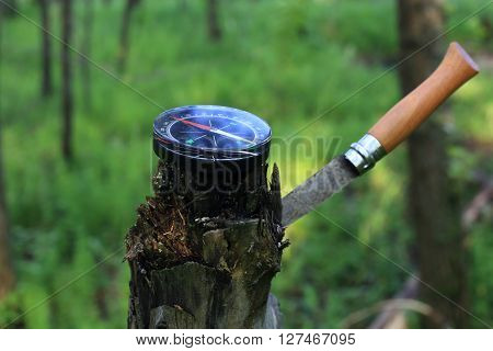 Compass in the wood. The navigation device the specifying azimuth
