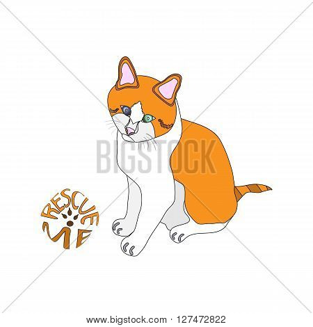 outlined vector illustration of white and ginger cat next to the rescue me sign
