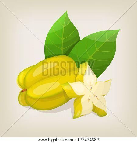 Fresh Star fruit Carambola. Vector illustration EPS10