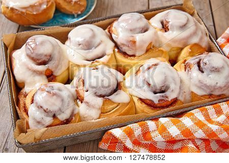 Fresh Sweet Homemade Cinnamon Rolls in Baking Pan
