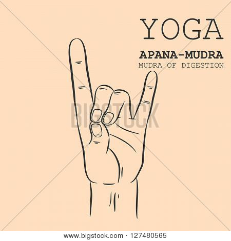 Hand in yoga mudra. Apana-Mudra. Vector illustration.