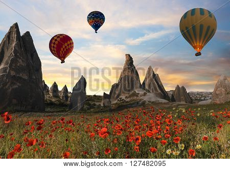Hot air balloons flying over a field of poppies and rock landscape at Cappadocia Turkey