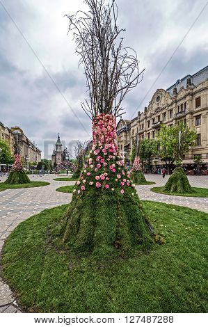 TIMISOARA ROMANIA - APRIL 25 2016: Panoramic view in one rainy day of historic buildings from Victory Square with floral arrangements in front.