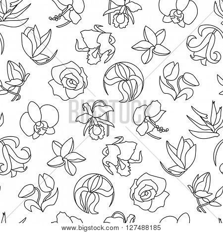 Seamless pattern with different flowers. Black and white.