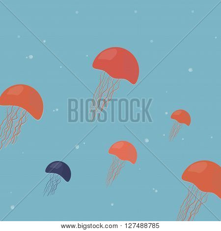 jellyfish medusa illustration jelly marine animal ocean
