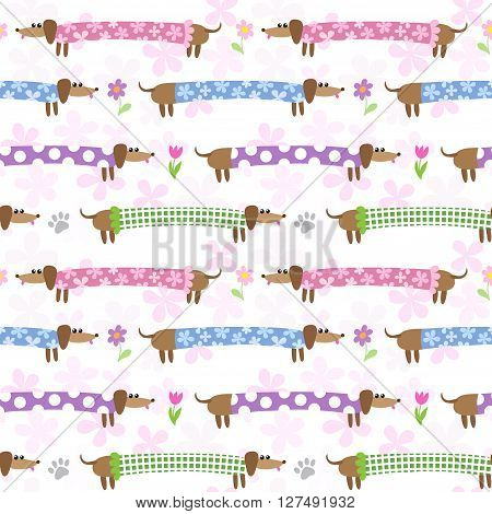 Seamless pattern with cute dachshunds in striped clothing