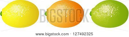 Scalable vectorial image representing a fruit food citrus, isolated on white.