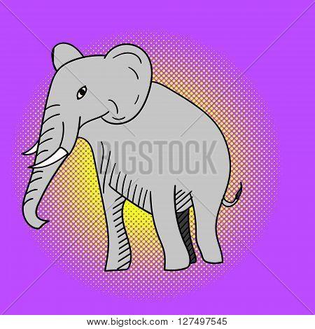 Elephant pop art vector. Beautiful adult Elephant looking at us, illustration isolated on white