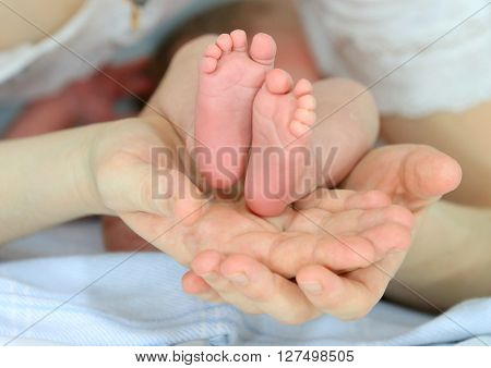 small happy baby feet in mother hands