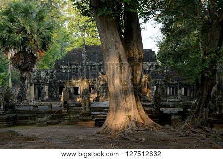 Asia Cambodia Angkor Banteay Kdei
