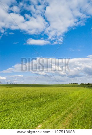 Green Plain Scenic View