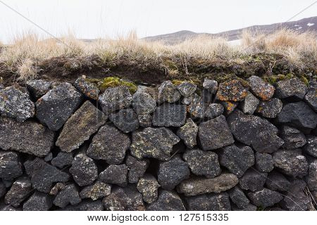 Rock wall with turf and colourful moss
