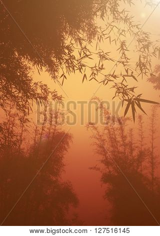 silhouette Bamboo Forest as Dusk Concept