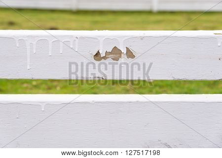 Poorly painted white fence, with paint drips and chipped