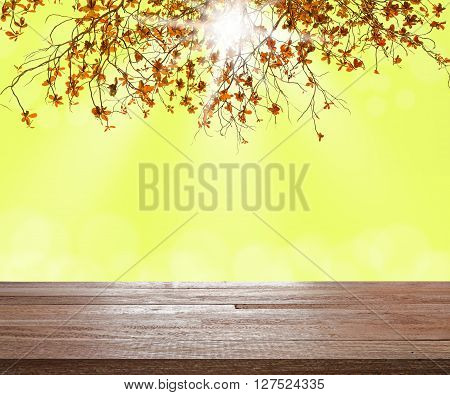 Wooden table montage on branch of tree with blurred light bokeh and sunray in vintage tone Can be used for display or montage your products