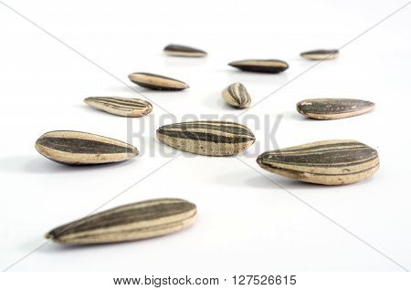 Close up Sunflower seeds on white background.