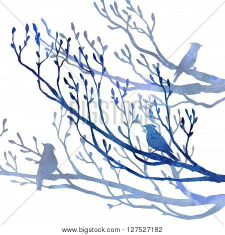 silhouettes of birds at tree drawing in watercolor, hand drawn songbird at branch, artistic illustration