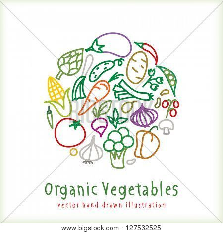 vector hand drawn collection of vegetables