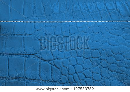 Blue pearl texture of reptile skin with seams and edges. Useful as a background