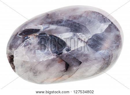 Tumbled Tamerlane Stone (amethyst Quartz) Gemstone