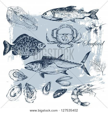 vector hand drawn seafood set - shrimp, crab, lobster, salmon, oysters, mussel, tuna, trout, carp. mediterranean cuisine seafood sketch