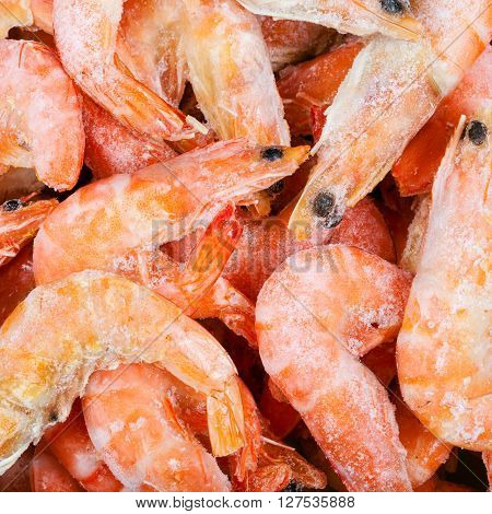 Frozen Boiled Red Shrimps Close Up
