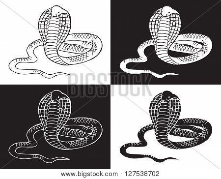illustration on black and white background Cobra snake