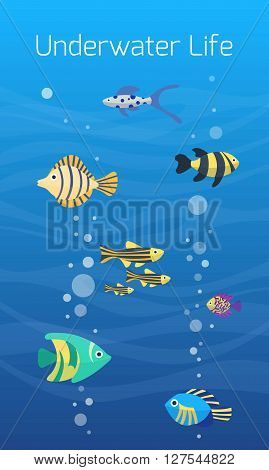 Underwater world. Cute cartoon colorful different fish. Aquarium underwater life. Flat vector icons. Aquarium fish