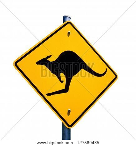 Kangaroo roadside safety warning sign in Australia.