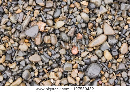 The Surface Texture Of Wet Sea Beach Pebbles Of Medium And Small Size